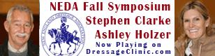 NEDA Fall Symposium with Ashley Holzer and Stephen Clarke