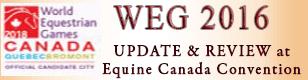 WEG 2016 Update