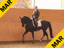 Nathalie Wittgenstein <br> Riding &  Lecturing<br>Fadienne<br> Danish Warmblood<br> 4 yrs. old<br>Training: Elementary Level<br>Duration: 27 minutes