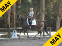 USDF APPROVED<br>University Accreditation <br>George Williams<br>Assisting<br>Joan Smith<br>Twister<br>by:Jazz<br>6 yrs.old KWPN<br>Training: 2nd Level<br>Duration: 44 minutes