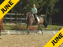 Nathalie Wittgenstein<br>Riding & Lecturing<br>Rigoletto<br>Danish Warmblood<br>by: Rubinstein<br>9 yrs. old Gelding<br>Training: Grand Prix<br>Duration: 35 minutes