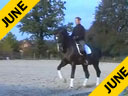 Leonie Bramall<br>Riding & Lecturing<br>Karl<br>Holsteiner<br>13 yrs. old Stallion<br>Training: Grand Prix<br>Duration: 25 minutes