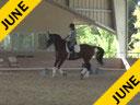 Volker Brommann Assisting Georgeann Benesch Lion King 8 yrs. Old Friesian Buckskin Sporthorse by: Berend Training: 2nd Level Duration: 29 minutes