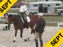 Day 1<br>Volker Brommann<br>Assisted by<br>Hubertus Schmidt<br>Farino<br>Westphalian<br>8 yrs. old Gelding<br>Training:4th Level<br>Duration: 42 minutes