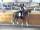 Monica Theodorescu<br> Assisting<br> Mary Armstrong<br> Great Gatsby<br> 14 yrs. old Gelding<br> Training: Grand Prix Level<br> Owner: Mary Armstrong<br> Duration: 35 minutes