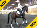 Day 1<br>Heiki Kemmer<br>Assisting<br>Nancy Lavoie<br>Alexis<br>Oldenburg<br>18 yrs. old Mare<br>Training: GP Level<br>Duration: 33 minutes