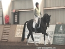 NEDA Fall Symposium<br> Steffen Peters<br> & Shannon Peters<br> Assisting<br> Cindi Wylie<br> Edelrubin<br> Westfalen<br> 4 yrs. old Gelding<br> by: Florestan<br> Training: 1st Level<br> Duration: 34 minutes