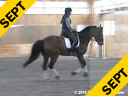 Day 3<br>Heike Kemmer<br> Assisting<br> Linda Parmenter<br> Odin<br> KWPN<br> 14 yrs. Gelding<br> Training: PSG Level<br> Duration: 35 minutes