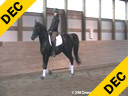 Jeremy Steinberg<br> Assisting<br> Jess Havey<br> Rubinous<br> 9 yrs. old Stallion<br> Oldenberg<br> By: Rubinstein<br> Owned by:Dreamscape Farm<br> Training: 3rd Level<br> Duration: 50 minutes