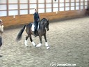 SFMWNY Maplewood Warmbloods<br> Michael Klimke<br> Assisting<br> Elizabeth Niemi<br> A'More<br> KWPN<br> 11 yrs. old Stallion<br> Trainig: 3rd/4th Level<br> Owner: Niemi Dressage<br> Duration: 33 minutes