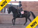 Shannon Dueck<br> Riding & Lecturing<br> Sentimiento I<br> 10 yrs. old PRE- Stallion<br> Training: 1-2/GP Level<br> Owner: Tamara Gerber<br> Duration: 43 minutes