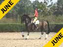 Available on DVD No.17<br>Rudolf Zeilinger<br>Riding &amp; Lecturing<br>Franciscus<br>Westphalian<br>7 yrs. old Gelding<br>Training: Prix St. George/I-2<br>Duration: 32 minutes