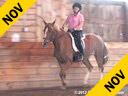 Mette Rosencrantz Riding & Lecturing Taison KWPN Dutch Warmblood 11 yrs. old Gelding by: Negro Training: GP Level Owner: Mette Rosencrantz Duration: 35 minutes