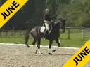 Hubertus Schmidt<br>Riding & Lecturing<br>Forest Gump<br>by: Florestan<br>Westphalian<br>10 yrs. old Gelding<br>Training: Grand Prix<br>Duration: 32 minutes