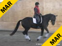 Day 3<br> Heike Kemmer<br> Assisting<br> Nancy Later Lavoie<br> Alexis D<br> Oldenburg<br> 18 yrs. old Mare<br> Training: GP Level<br> Duration: 40 minutes