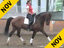Penny Rockx<br>Riding & Lecturing<br>Olympic<br>KWPN<br> 12 yrs. old Gelding<br>by: Jazz<br>Essen Belgium<br>Duration: 48 minutes