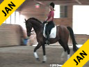 Christoph Hess<br> Assisting<br> Colleen O'Connor<br> VDL Navarone<br> KWPN<br> 12 yrs. old Stallion<br> by: Jus de Pomme<br> Training: Intermediare 2<br> Owner: Kathy Hickerson<br> Majestic Gaits<br> Duration: 60 minutes