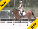 Shannon DueckRiding and LecturingAyscha8 yrs. Old MareOldenburgTraining: Grand PrixDuration: 45 minutes