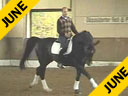 Hubertus Graf Zedtwitz<br>Riding & Lecturing<br>Rubicon<br> by: Rhythmus<br>Rheilander<br>15 yrs. old Gelding<br>Training: Grand Prix<br>Duration: 37 minutes