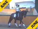 Penny Zavitz<br>Riding & Lecturing<br>Tango<br>KWPN<br>13 yrs old Gelding<br>Training: Grand Prix<br>Duration: 41 minutes