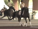 USDF Trainers Conference<br> Day 1<br> Steffen Peters<br> Assisting<br> Jessica Jo Tate<br> Faberge<br> Westfalen<br> 10 yrs. Old Gelding>br> Owner: Elizabeth Guerlsco-Wolf<br> Duration: 36 minutes