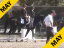 USDF APPROVED<br> University Accreditation<br> Steffen Peters<br> Assisting<br> Alaska Culmore<br> Don Gasparo<br> 3 yrs. old<br> Hanoverian Gelding<br> Training Level<br> Duration 25 Minutes
