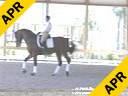 Cerra Parra<br> Jupiter, Florida<br> Riding & Lecturing<br> Serein<br> 11 yrs. old<br> Training: Grand Prix<br> Duration: 30 minutes