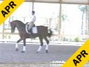 Cerra Parra<br> Jupiter, Florida<br> Riding & Lecturing<br> Serein<br> 11 yrs. old<br> Training: Grand Prix<br> Duration: 30 minutes