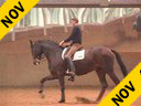 Rudolf Zeilinger<br>Riding & Lecturing<br>Shik Kita<br>Oldenburg<br> by: Sandro Hit<br>6 yrs. old<br>Training: M Level<br>Duration: 33 minutes