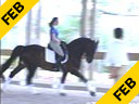 Cesar Parra<br> Assisting<br> Noel Williams<br> P.K.L<br> Hanoverian<br> 12 yrs. old Stallion<br> Training: PSG Level<br> Duration: 37 minutes