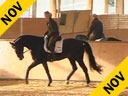 Nathalie Wittgenstein<br>Daily Working Sessions<br>Riding & Lecturing<br>Digby<br> by: Donnerhall<br>Danish Warmblood<br>9 yrs. old<br>Training: Grand Prix<br>Duration: 42 minutes