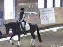 NEDA Fall Symposium<br>Ingred Klimke<br> Assisting<br> Katie Murphy<br> Esccord RGS<br> 6 yrs. Old &<br> Annie Morris<br> Julia's  Magic<br> Danish Warmblood<br> 7 yrs. Old Gelding<br> Training: 2nd Level<br> Owner:  Denise Sarnoff<br>
