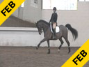 Day 1<br> Jan Brink<br> Assisting<br> Jeremy Steinberg<br> Thomas<br> KWPN<br> by: Metal<br> 10 yrs. old Gelding<br> Training: PSG Level<br> Owner: Sandi Fortan<br> Duration 41 minutes