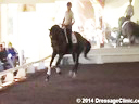 USDF Trainers Conference<br> Day 1<br> Steffen Peters<br> Assisting<br> Angela Jackson<br>  Allure S<br> KWPN-NA<br> 8 yrs. old Mare<br> by: Rousseau<br> Owner: KC Dunn<br> Duration: 48 minutes