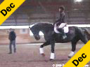 Ellen Bontje<br>Assisting<br>Jodie Baker<br>Madore<br>13 yrs. old Gelding<br>Danish Warmblood<br>by: May Sheriff<br>Owner:Jodie Baker<br>Training: Grand Prix<br>Duration: 36 minutes