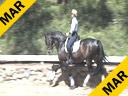 Mette Rosencrantz Riding & Lecturing Donnatello Swedish Warmblood by: Don Schufro Owner: Mette Rosencrantz Training:3rd Level Duration: 26 minutes