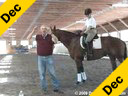 Day 2<br>Christoph Hess<br>Assisting<br>Joy Congdon<br> Wixen FFH<br>6 yr. old Mare<br>Training: 2nd level<br>Duration: 54 minutes