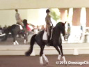 USDF Trainers Conference<br> Day 2<br> Steffen Peters<br> Riding & Lecturing &<br> Assisting<br> Noel Williams<br> Sir Velo<br> Westphalen<br> 7 yrs. old Gelding<br> by: Sandro Bedo<br> Owner: Melissa Mulchahey<br> Duration:48