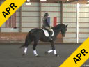 Karen Pavicic<br> Assisting<br> Rebecca Cowden<br> Azeite do Vouga<br> Lusitano<br> 10 yrs. old<br>  Training: GP<br> Duration: 42 minutes