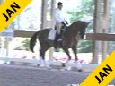 Cesar Parra<br> Riding & Lecturing<br> Furst Fabio<br> Reinlander<br> 6 yrs. old Gelding<br>  Training: 3rd Level<br> Duration: 34 minutes