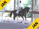 Cesar Parra<br> Riding & Lecturing<br> Furst Fabio<br> Reinlander<br> 6 yrs. old Gelding<br>  Training: 3rd Level<br> Duration: 34 minutes