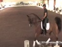 USDF Trainers Conference<br> Day 2<br> Steffen Peters<br> Assisting<br> Olivian LaGoy-Weltz<br> Rassings Lonoir<br> 9 yrs. old Gelding<br> by: De Noir<br> Duration:  43 minutes