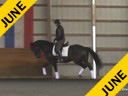 Kathy Connelly<br> Assisting<br> Michel Gerlach<br> Udjang<br> KWPN<br> 15 yrs. Gelding<br> Training:  GP<br> Owner:  Michel Gerlach<br> Duration: 31 minutes