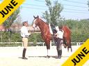 Juan Matute 3 Months Under Saddle Assisting Paloma Praga First Song Westfalian 3 yrs. old Duration: 22 minutes