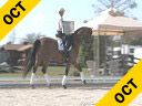 Bill Waren<br> Riding &amp; Lecturing<br> Romantic<br> 11 yrs. old  Gelding<br> Owner: Romantic Syndicate<br> Training: 1-1 Level<br> Duration: 31 minutes