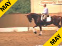 Hubertus Zedwitz<br> Riding & Lecturing<br> Wid Wild West<br> Hanoverian<br> by: Weltmeter<br> 9 yrs. old Gelding<br> Training: Grand Prix St. George<br> Duration: 29 minutes