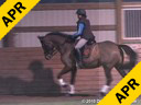 Jeremy Steinberg<br> Assisting<br> Jill Andersen<br> Sophie<br> Hanoverian<br> 11 yrs. Old Mare<br> Training: 3rd Level<br> Duration: 36 minutes