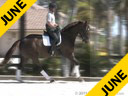 Kathy Connelly<br> Assisting<br> Ryan Yap<br> Fortisino<br> KWPN<br> by: Florestan/ DeNiro<br> 6 yrs. old Gelding<br> Training: 2nd Level<br> Duration: 29 minutes