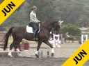 Shannon Peters<br> Riding & Lecturing<br> Flor De Selva<br> (owned by Laurie Browning<br> and Shannon Peters)<br> Westfalen Gelding<br> 8 yrs. old<br> Training Prix St. George<br> Duration: 29 minutes