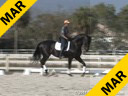 Conrad Schumacher<br> Assisting<br> Bill Warren<br> Romantic<br> by: Rodiamant<br> Oldenburg<br> 12 yrs. old Gelding<br> Training: GP<br> Owner: Team Romantic LLC<br> Duration: 26 minutes